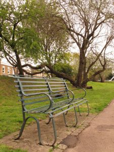 Bench in Consort Park
